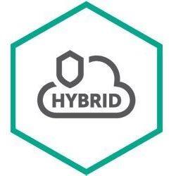 Hybrid Security