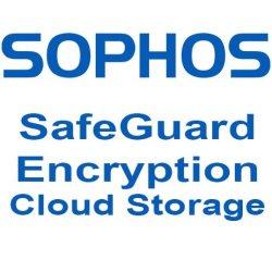 SafeGuard Encryption for Cloud Storage